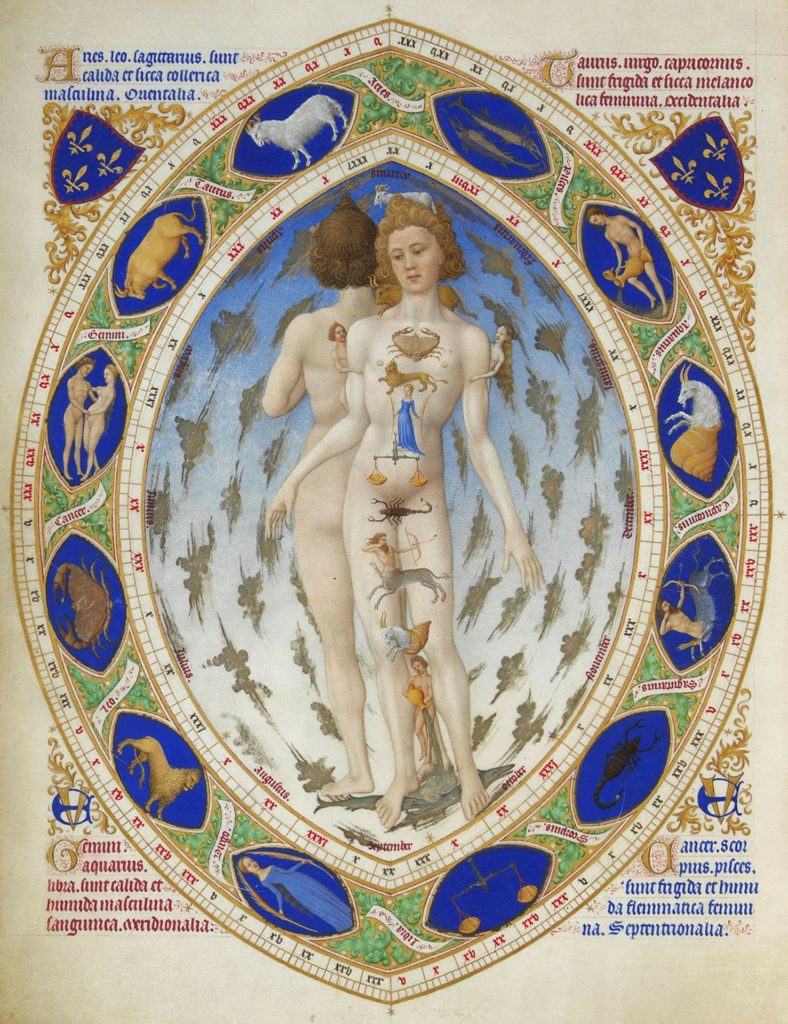 Anatomical Man Zodiac